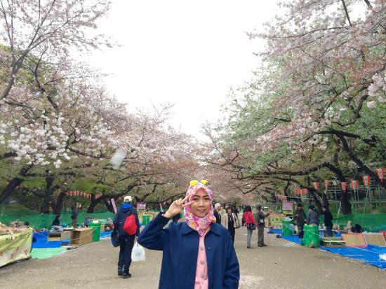 Ueno Park : photo1.jpg