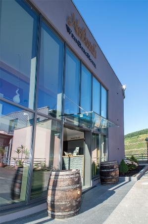 WeinBergHotel Nalbach Reil/Mosel