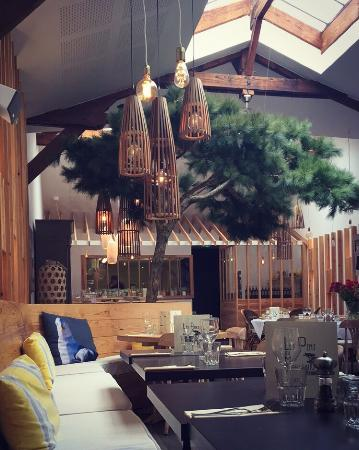 les pins du moulleau photo de les pins du moulleau arcachon tripadvisor. Black Bedroom Furniture Sets. Home Design Ideas