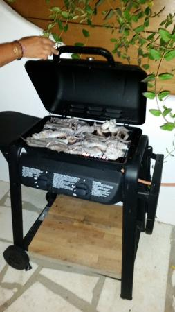 9 Muses: Il Barbecue!