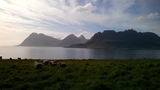 Kjorvogur, ไอซ์แลนด์: View of the east coast