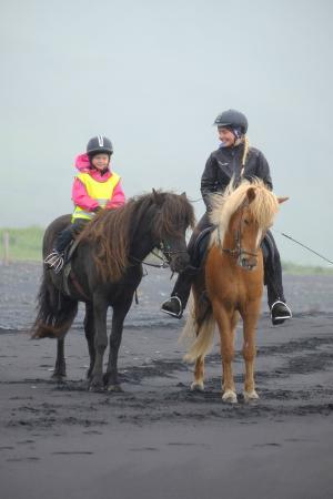 Vik Horse Adventure