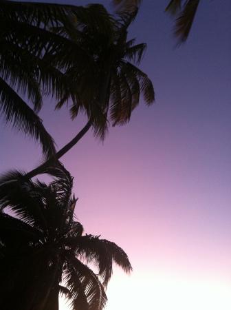 Papageno Resort: Sunset in paradise