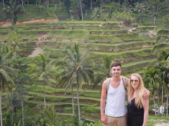 Online Bali Driver - Day Tours