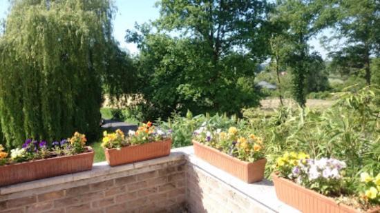Bierbeek, Belgique : view terrasse