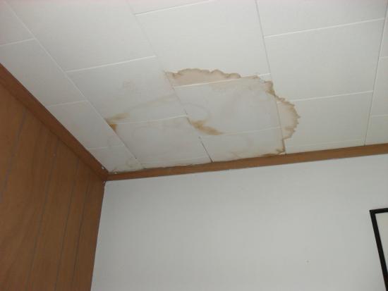 Tallwood Motel: ceiling