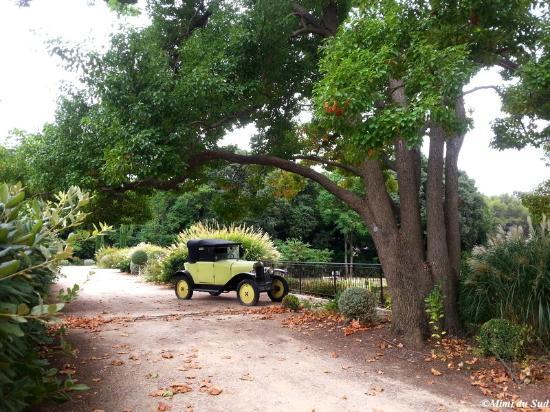 L 39 enclos des nes de provence photo de jardin domaine de - Les jardins de l enclos portet sur garonne ...