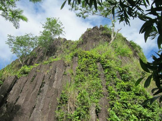 Palikir, اتحاد دول ميكرونيزيا: Mt. Pwusehn Malek
