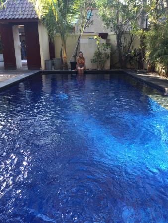 Aaliku Bungalows : Pool