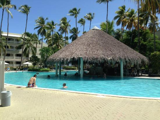 swim up bar photo de vista sol punta cana bavaro tripadvisor. Black Bedroom Furniture Sets. Home Design Ideas