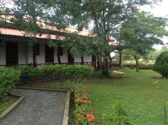 Wila Safari Hotel: Buiten is het mooi