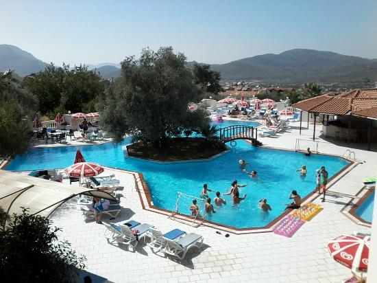 Sunshine Holiday Resort: Diger