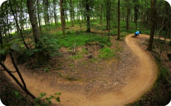 Coleford, UK: Mountainbiking