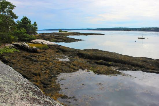 Boothbay Region Land Trust : View from Porter Preserve