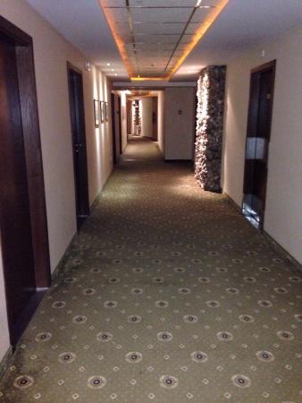 Park Hotel Izida: photo3.jpg