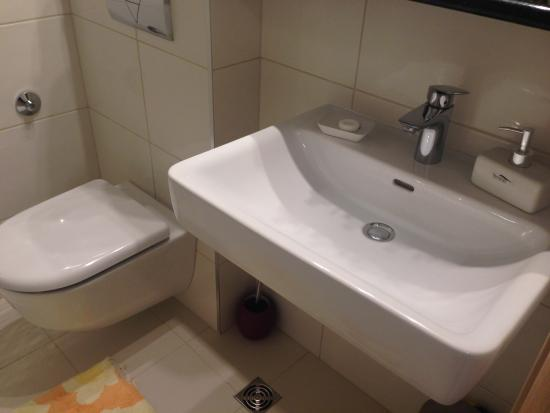 Apartments Gajeta : 洗面