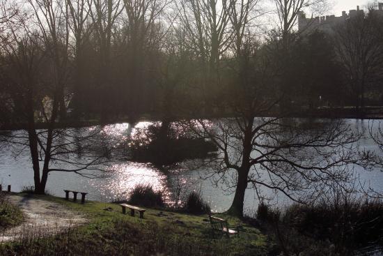 Swanbourne Lake