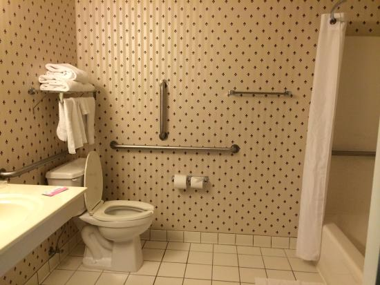 Country Inn & Suites by Radisson, Elk River, MN: バスルームも快適
