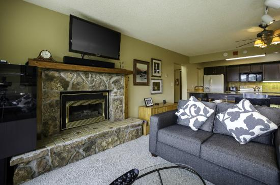 Bronze Tree Condominiums: Sample Living Room