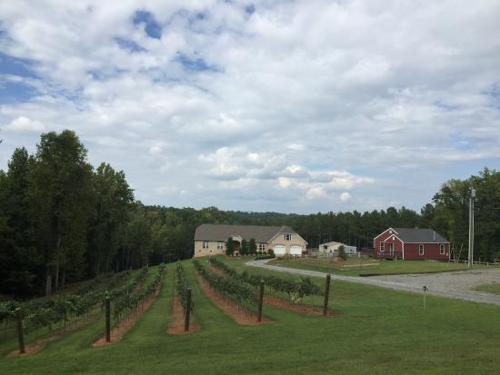 Yadkinville, Северная Каролина: Sweet Home Carolina Vineyard & Winery