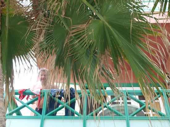 Hacienda San Jorge: Balkon unter Palmen