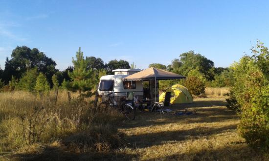Camping  Picture of Camping de la Motte Aubert, Saint  ~ St Saturnin Du Bois