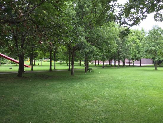 Sculpture Garden Shade Trees Picture Of Minneapolis Sculpture Garden Minneapolis Tripadvisor