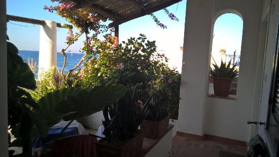 Hotel Umberto a mare: giardino