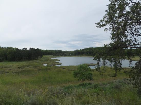 Rochert, MN: Tamarac Wildlife Refuge
