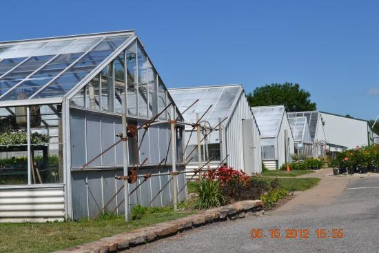 Greenhouses, College of the Ozarks: hot houses