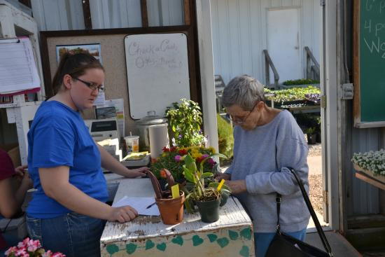 Greenhouses, College of the Ozarks: checking out