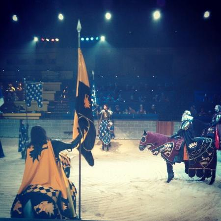 Medieval Times Maryland Castle: Medieval Times - Yellow Knight