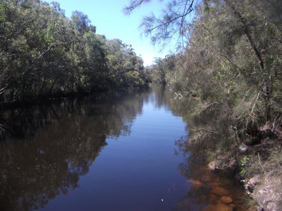 Gagaju Bush Camp: reflective waters