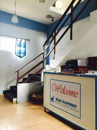 Blue Elephant Tourist Guest House: Warm welcome to the Blue elephant....