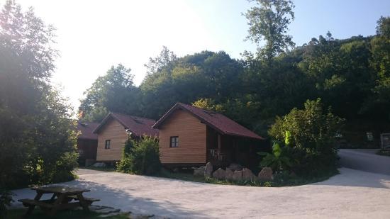 Camping Picos de Europa