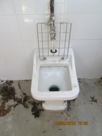 Camping Les Pins: pour vidé les toilettes chimique.