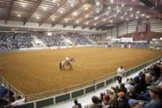 Senator Bob Martin Eastern Agricultural Center: Main Arena
