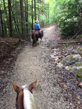 Ferguson, Северная Каролина: On the trail