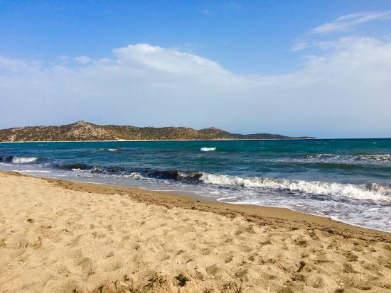 Schinias Beach: Plage de sable
