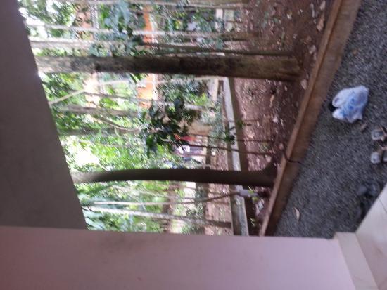 Elephant Hills Home Stay: entrance