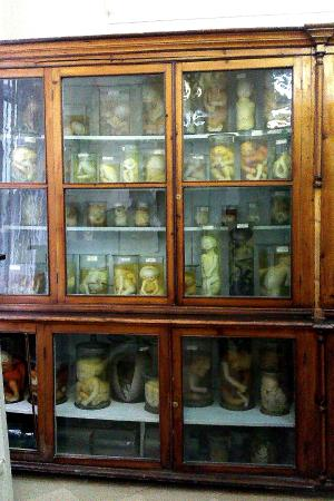 Anatomical Pathology Museum