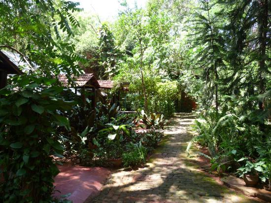 Sharnga Guesthouse: Sharnga GH