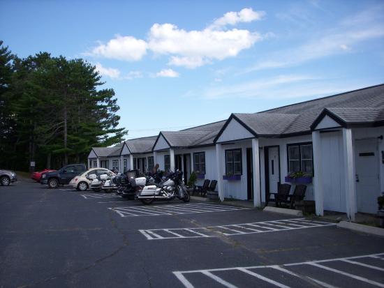 White Birches Motel: chambres vues de l'exérieur - 1 large allée avec de chaque côté la même ligne