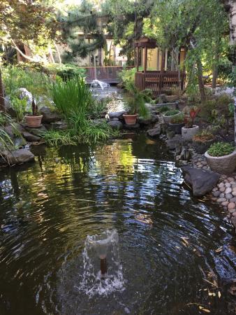 Garden Picture of Dinahs Garden Hotel Palo Alto TripAdvisor