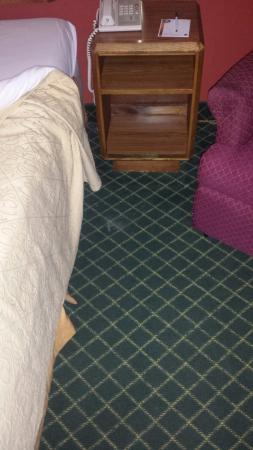 Quality Inn Syracuse Carrier Circle: The state of the room floor.