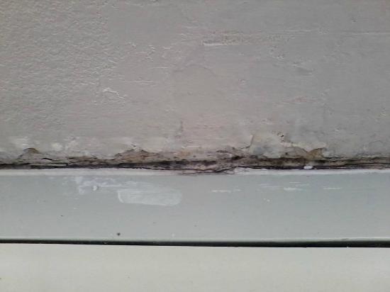 Motel 6 Ft Worth- Bedford : more mold....
