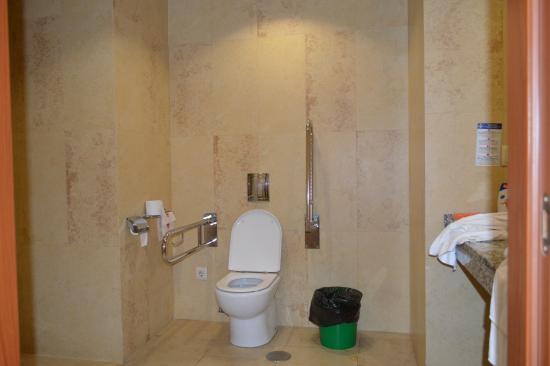 Hotel Las Palmeras: Wheelchair bathroom