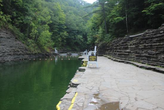 Dansville, NY: Stony Brook State Park - Swimming Hole