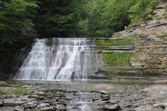 Dansville, NY: Stony Brook State Park - 2nd Falls