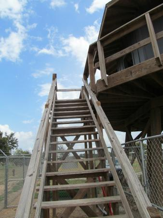 Camp Hearne: Stairs up the guard tower